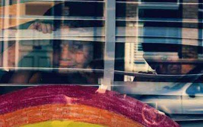 Life Windows (Humans)
